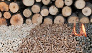 granulés bois