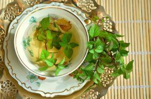 decorer la cuisine avec des plantes