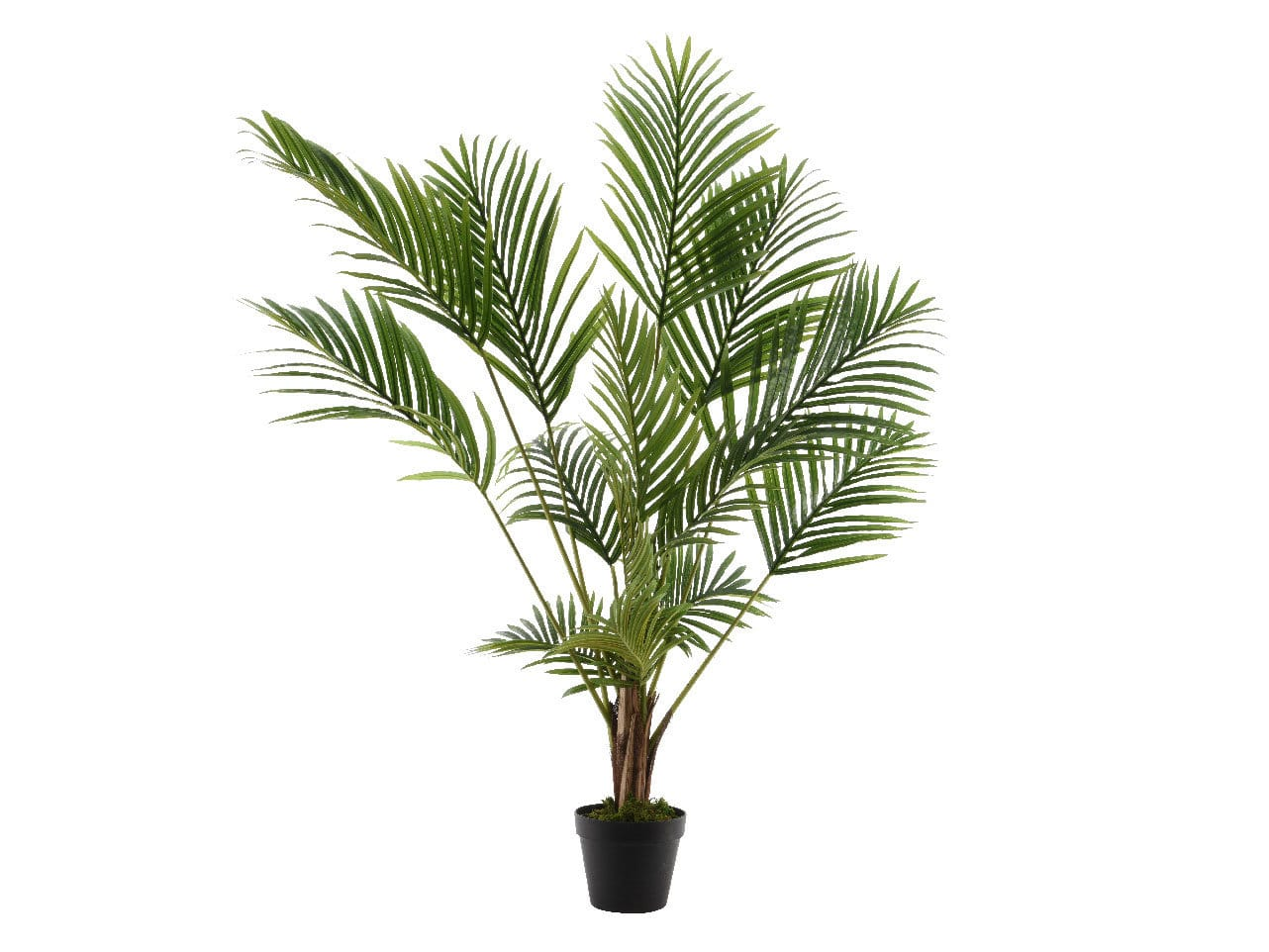 Les attraits des plantes artificielles en d coration for Quel palmier en pot exterieur