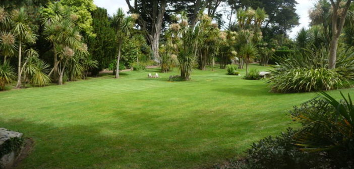 amenager jardin