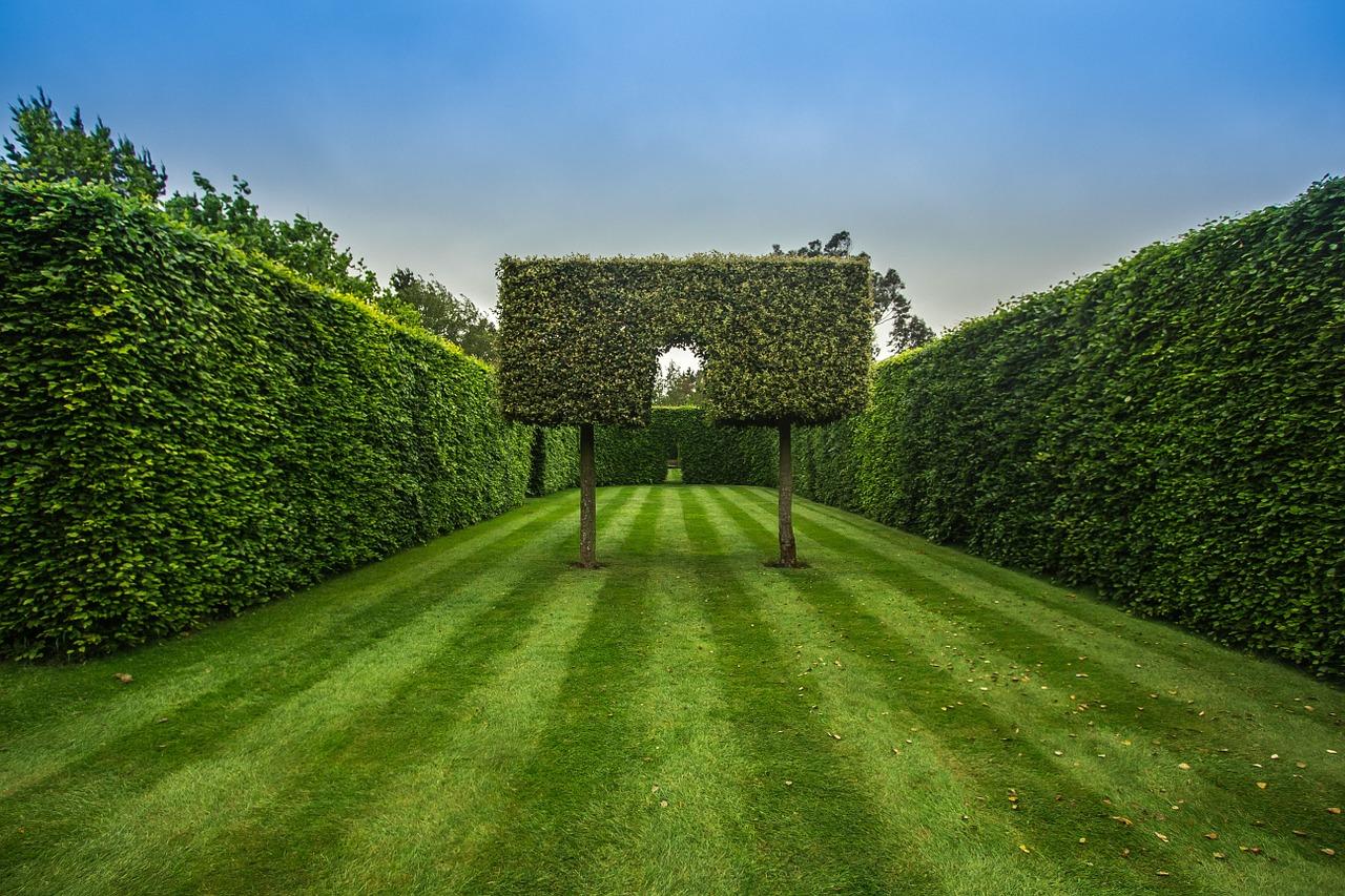 garden-1435518_1280