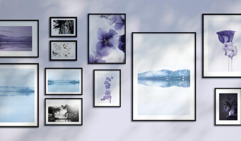 poster violet